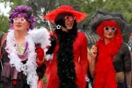Regenbogenparade 2008